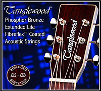 Tanglewood TWGS12 Ph.​Br. Coated 012/​053