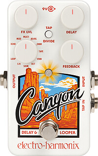 Electro Harmonix Canyon Delay/​Looper