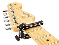 Fender® Dragon Capo black