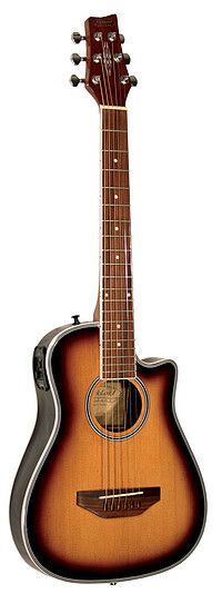 Kirkland Traveller Guitar *