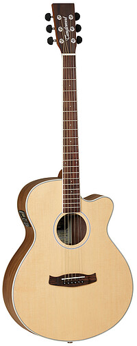 Tanglewood DBTSFCEBW Discovery Exotic
