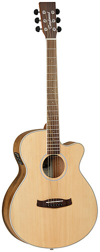 Tanglewood DBTSFCEPW Discovery Exotic